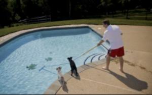 Nettoyer sa piscine pour éviter l'eau verte