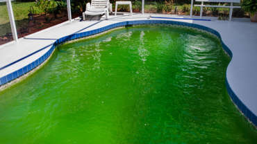 Nettoyer l'eau verte de sa piscine avec du bicarbonate de soude