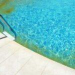 Les algues jaunes de piscine, ou algues moutardes